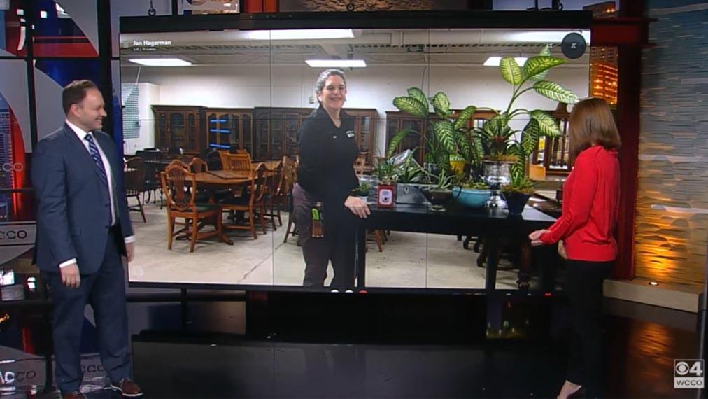 Jan on a a DIY segment on WCCO